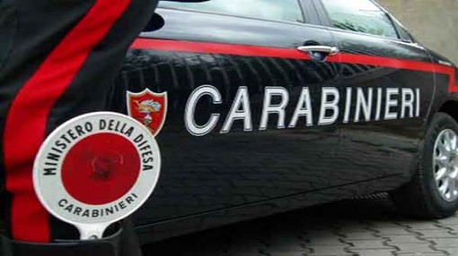 Tre arresti per droga nel Torinese: scoperta una serra di marijuana casalinga
