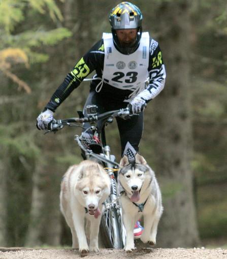 Un bibianese con i suoi Siberian Husky finisce in nazionale