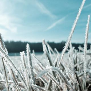 Agricoltura Piemonte: bando da 1.5 milioni per impianti di prevenzione dalle gelate
