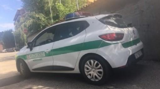 Polizia locale Moncalieri - foto di archivio
